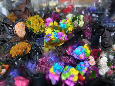 Floral DEPT